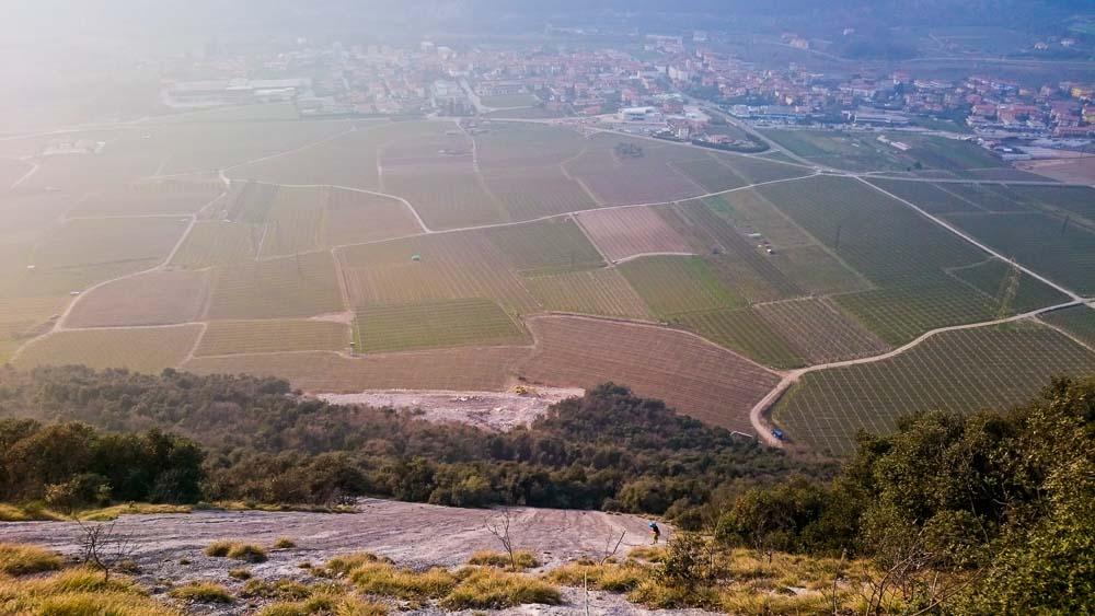 Blick auf die Weingärten