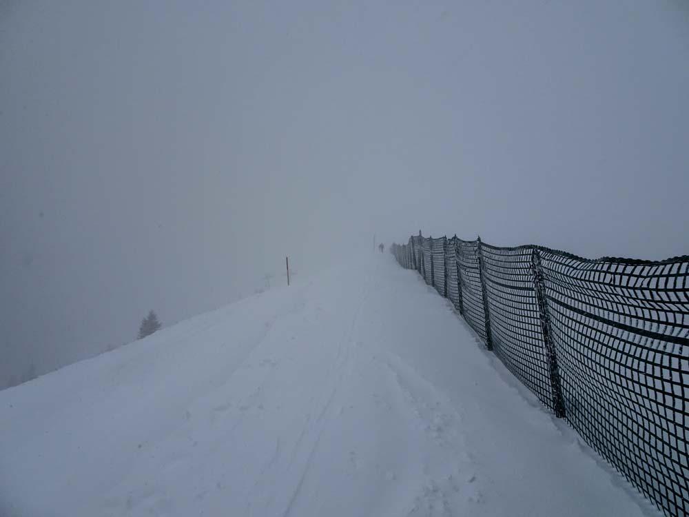 Hier geht es zum Rosskopf - ganz vorne sieht man das Gipfelkreuz schon leicht.