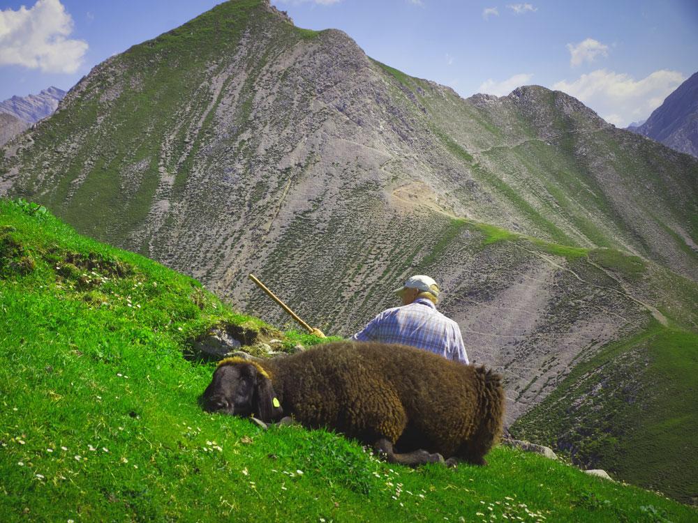 #1 Die Berge kennenlernen durch Wanderungen