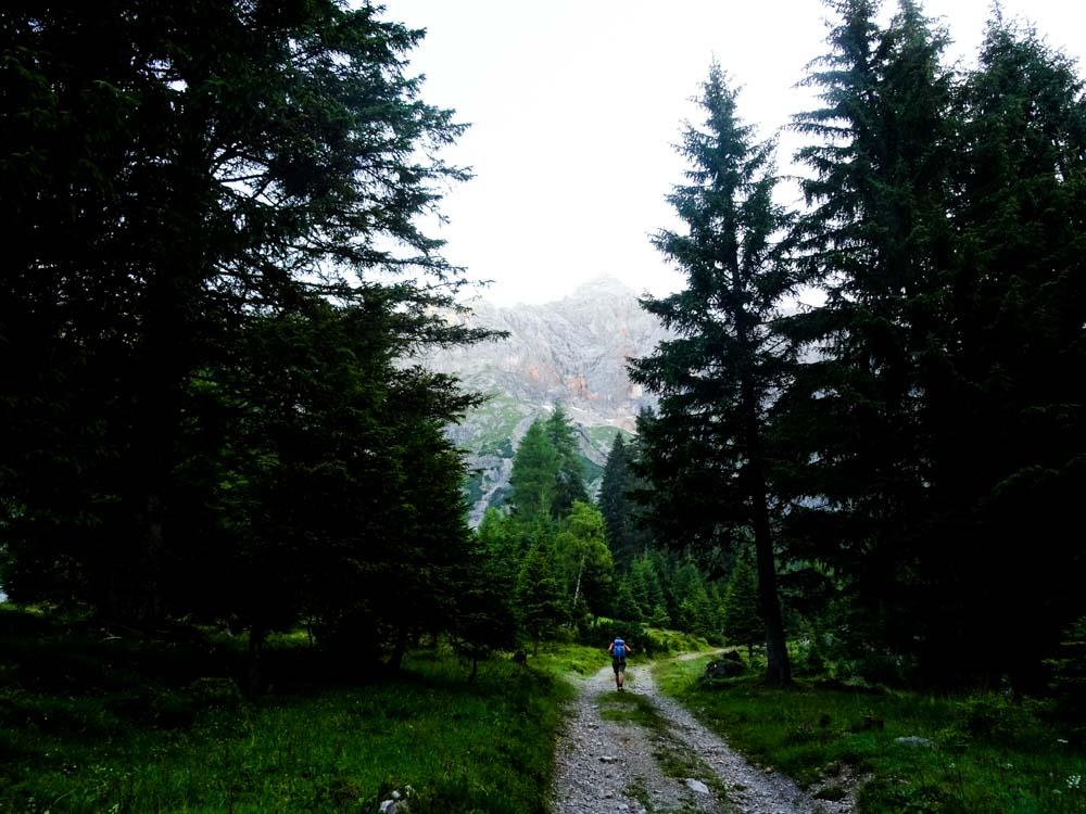 Aufstiegsweg auf der Forststraße