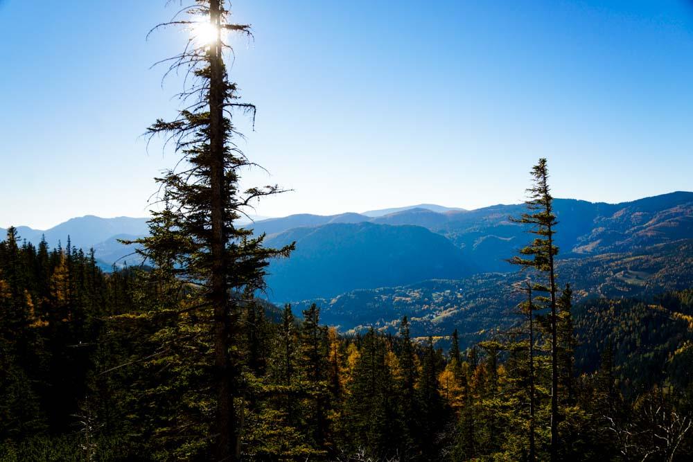 Dichter Wald im Tal - und der grenzenlose Weitblick von der Rax