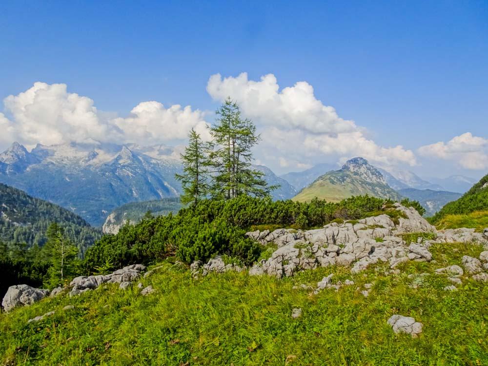 Blick Richtung Steinberge - rechts neben den Bäumen der Hochkranz mit seinem Ostgrat - eine sehr schöne Tour