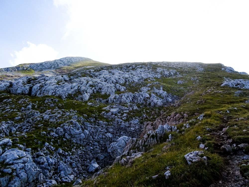 Im oberen Teil auf den felsdurchsetzten Wiesen