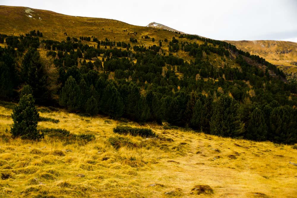 Wunderschöne Farben am Zirbitzkogel - Bergsteigerisch eher uninteressant, aber das Panorama ist spektakulär.