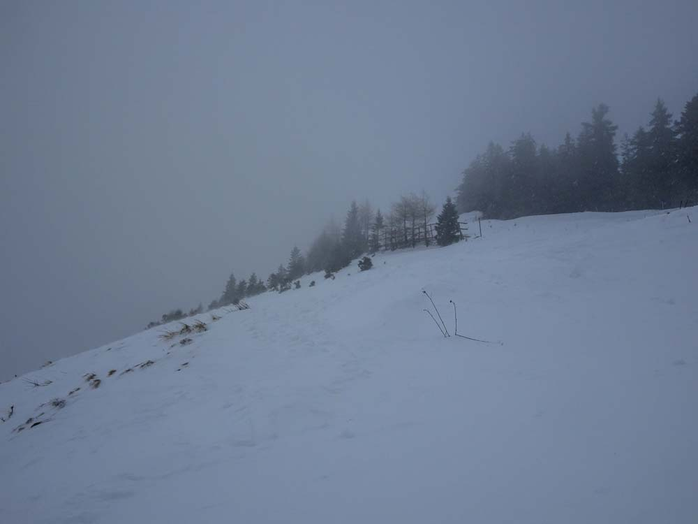 Hier geht es noch durch die Waldschneise am Gipfel.
